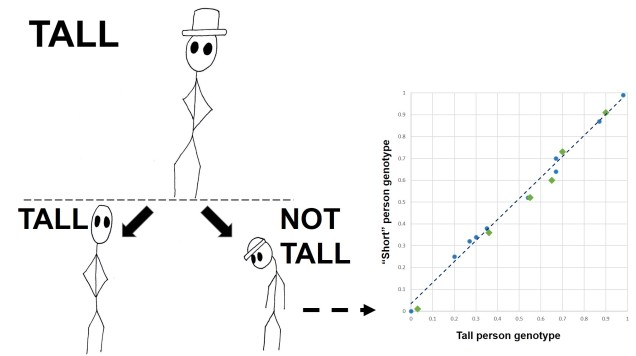 Polygenic height figure final
