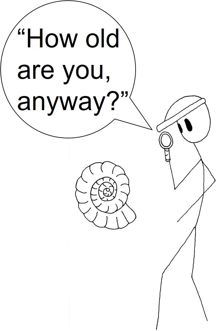 Ammonite comic.jpg