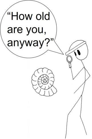 Ammonite comic.jpg