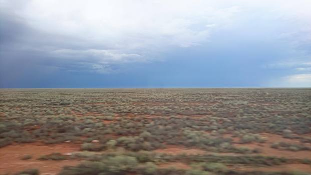 Nullarbor Plain photo