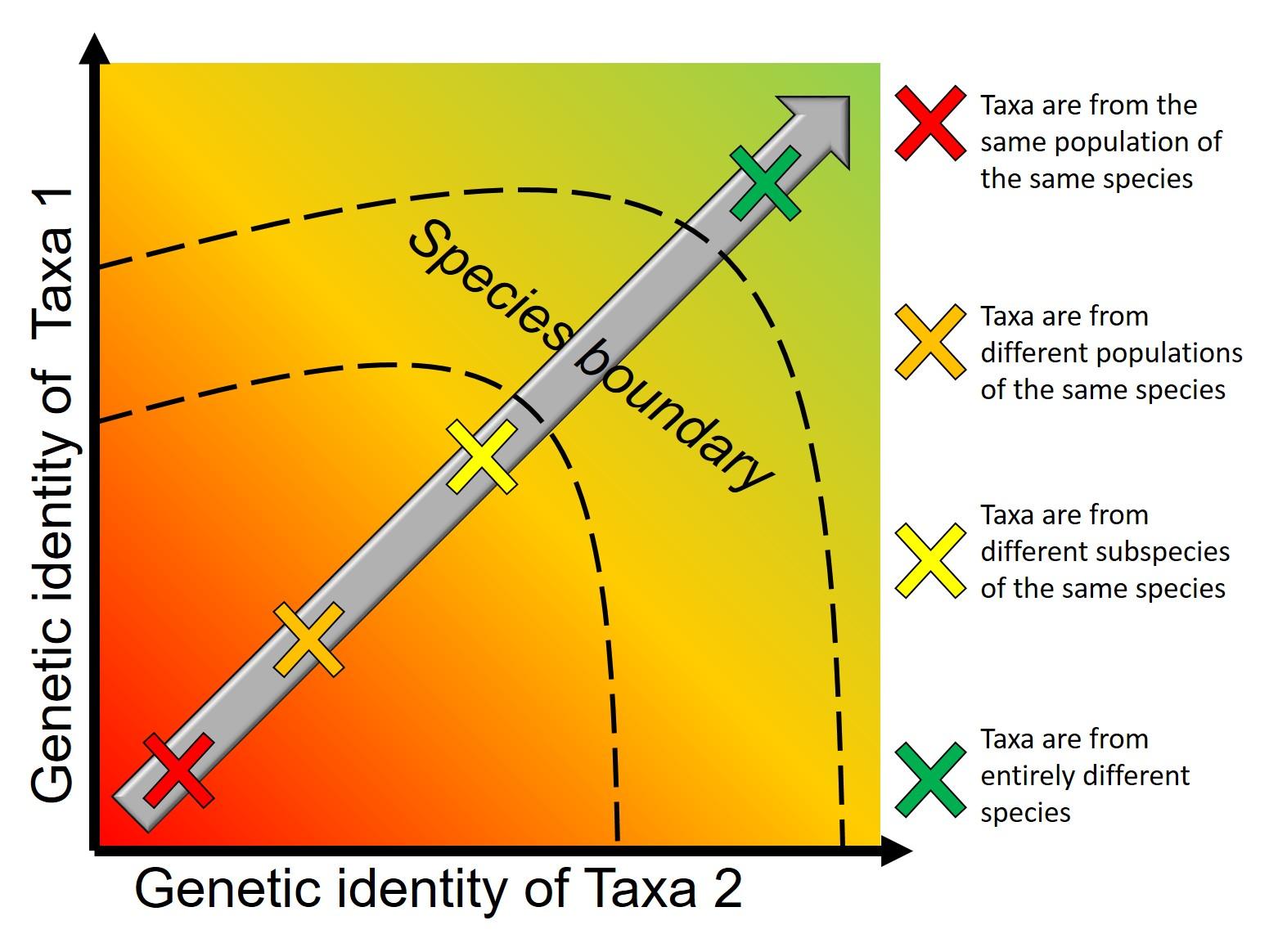 Speciation continuum figure