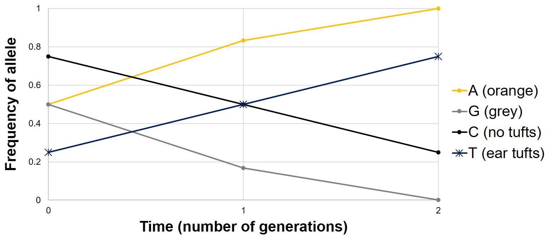 Graph of standing variation.jpg