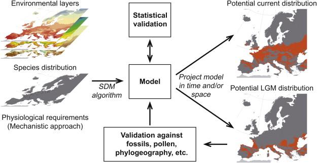SDM method.jpg
