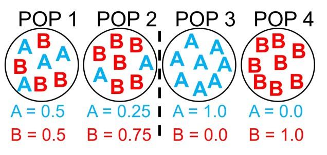 Allele freq vs identity figure.jpg