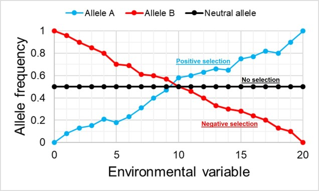 Genotype by environment figure.jpg