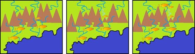 River capture figure
