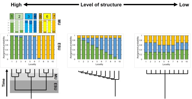Hierarchy of structure conservation figure